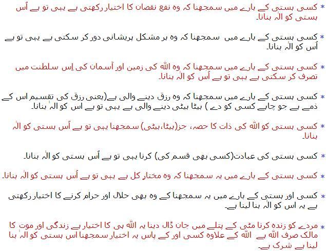 ZiaBashir Principles.JPG