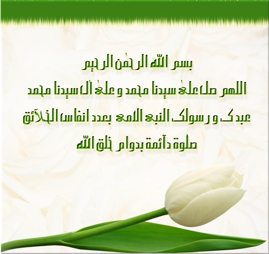 post-14222-0-28922300-1392960404_thumb.jpg