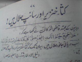 khinzeer_or_sanp_halal.JPG