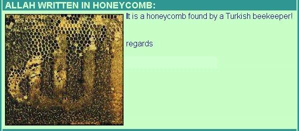 Allah__Honey_.jpg