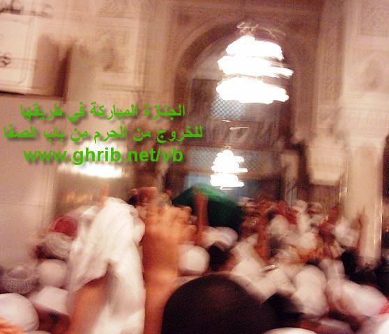 post-1390-1193415876.jpg