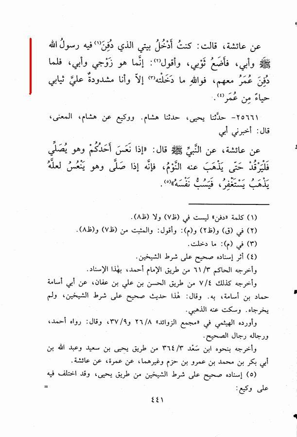 haya aesha 2.jpg